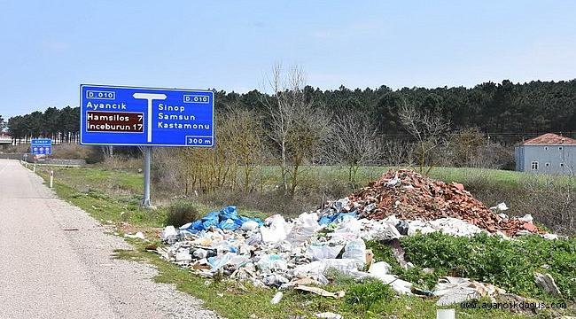 Sinop'ta yeşil alanlarda çevre katliamı!
