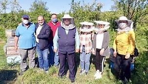 Arıcılık eğitiminde ilk ders Sinop'ta verildi