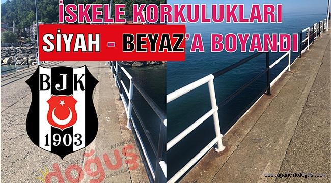 Son şampiyon Beşiktaş'ın renklerine boyandı