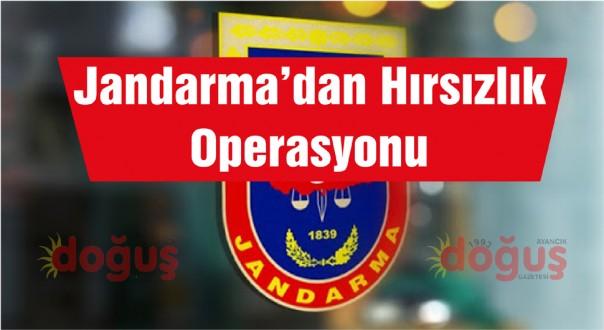 Jandarmadan Hırsızlık Operasyonu