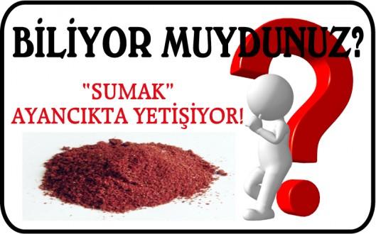 """""""SUMAK"""" AYANCIKTA YETİŞİYOR!"""